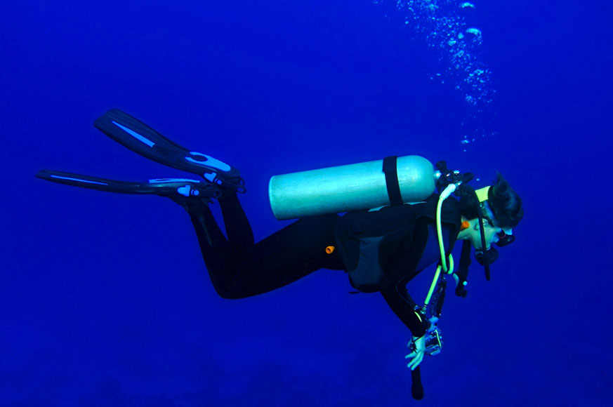 Bodrum Scuba Diving - Discover the Underwater Life!