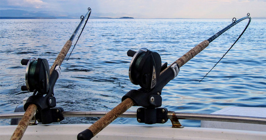 Bodrum Fishing Tour - A Peaceful Hobby - Bodrum Excursions