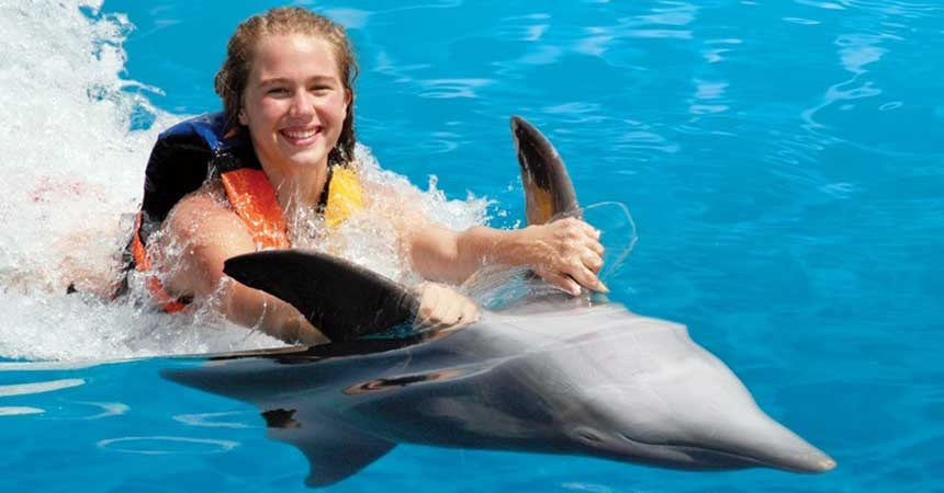 Bodrum Dolphin Park - Swimming with Dolphins in Bodrum